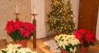 christmas-2011-009