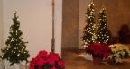 christmas-2011-012